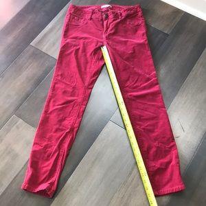 CAbi dark red corduroy crop pant - size 4